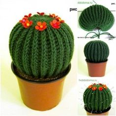 How to DIY Knitted Cactus Cosas A Crochet, Diy Crochet, Crochet Cactus Free Pattern, Crochet Pincushion, Fleur Crochet, Crochet Toys, Crochet Crafts, Crochets Décoratifs, Knitted Flowers