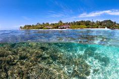 Isla Velidhu #maldivas