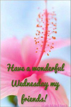 Happy Wednesday, Friends!