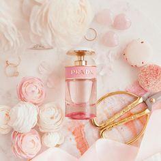 daily rosies dream - 236×236