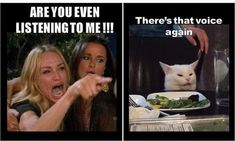 funny memes memes videos faces faces reaction faces reaction videos hilarious hilarious texts hilarious texts crush sarcastic sarcastic dark en espanol pictures funny pictures funny pictures humor quotes quotes for women halloween costumes facts Funny Shit, 9gag Funny, Funny Relatable Memes, Funny Cats, Funny Jokes, Funny Stuff, Funny Things, Fuuny Memes, Grumpy Cats