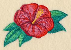 Hibiscus in Watercolor design (M6105) from www.Emblibrary.com