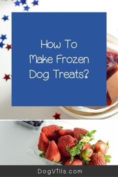 Ready for another delicious frozen dog treat that you can enjoy too? Today we're whipping up a tasty strawberry and blueberry frozen dog treat! Dog Treat Recipes, Dog Food Recipes, Frozen Dog Treats, Best Dog Food, Homemade Dog Treats, Blueberry, Peanut Butter, Berries, Strawberry
