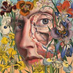 Juan Gatti Ciencias Naturales anatomy collages (1)