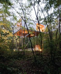 by Go Hasegawa in Japan @Jessica Palmerin (house in trees/ tree in house)