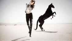 www.pegasebuzz.com/leblog/ | Horse in Fashion : Black Beauty by Tracey Morris for Genlux Magazine 2009