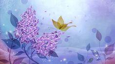 美丽的炫彩花卉桌面壁纸  #优质# #炫彩#