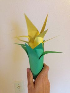 Build a rainforest in your classroom - plants