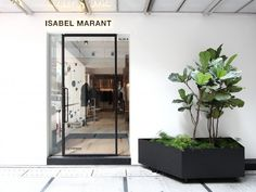 Seven Useful Shade Tolerant Groundcovers For Tough Spots Cigue Isabel Marant Hong Kong Yellowtrace Retail Store Design, Retail Shop, Retail Interior, Interior And Exterior, Isabel Marant, Retail Facade, Wood Cladding, Facade Design, Design Furniture