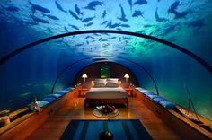 Qatar Underwater Hotel | Dormire tra pesci e coralli: i migliori resort con pernottamento ...