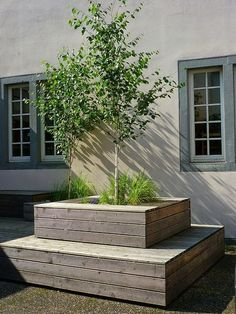 THIS IS IT. This what I pictured. Raised bed for tree, Garden Idea.