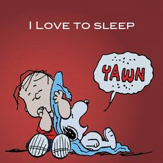 This is seriously me and my dog right now, oh my god I'm Charlie Brown and brandy is snoopy ! Peanuts Gang, Peanuts Cartoon, Charlie Brown And Snoopy, Peanuts Comics, Snoopy Love, Snoopy And Woodstock, I Love Sleep, Sleep Well, Can't Sleep