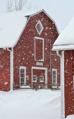 Its the most wonderful time of the year... Farm Animals, Winter Wonderland, House Styles, Windmills, Covered Bridges, Farm Houses, Red Houses, Country Barns, Country Living