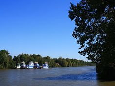 The Black Warrior River, as seen from the Riverwalk in Tuscaloosa, Alabama.