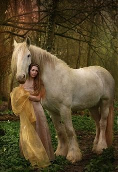 A Beautiful Horse and lady....