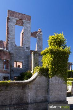 Hike to the Dungeness mansion ruins on Cumberland Island