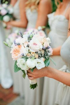 "{Lovely Bridesmaid's Bouquets Which Showcase: Pastel Peach David Austin English Garden Roses, Ultra Light Pink ""Vintage"" Garden Roses, White Garden Roses, White Ranunculus, White Lisianthus, Tiny Peach ""Vintage"" Spray Roses, Fresh Lavender, Silver Brunia, & Green Lamb's Ear···········································}"
