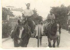 Κάρα με μούστο στην Λεωφόρο Πεντέλης, λίγο πριν τον 2ο Παγκόσμιο.(Ευγενής προσφορά του Θύμιου Κουράση,) Athens Greece, Horses, Animals, Vintage, Animales, Animaux, Animal, Vintage Comics, Animais