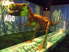 Lego Dinosaur, The Art of the Brick Exhibition, Discovery Times Square, New York City, Nathan Sawaya, Artist
