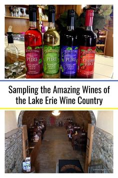Sampling the Amazing Wines of the Lake Erie Wine Country Wine Tasting Chicago, Wine Tasting Near Me, Wine Tasting Room, Wine Tasting Events, Wine Tasting Party, Great Lakes Region, Napa Valley Wine, Sweet Wine, Thing 1