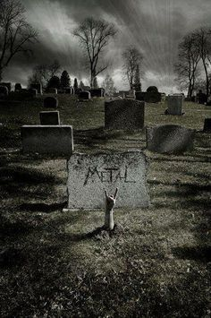 Metal Never Dies