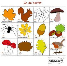 In de herfst (woordenschat)