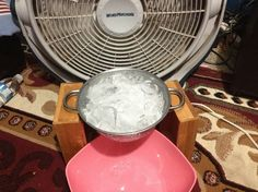 Beating the Heat with Low Tech: Bowl of Ice & a Fan