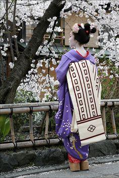 Geisha in spring
