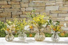 Arranjos feitos pela Milplantas com laranja kinkan para a nossa mesa de almoço no jardim, em vasos de Murano by Paula Bassini
