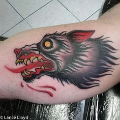 Old School Wolf Tattoo by Professional Tattoo Artist : Lance Lloyd. He is now booking appointments at Royal Flesh Tattoo and Body Piercing 4005 N Broadway St Chicago, IL 60613 (773) 975-9753 www.royalfleshtattoo.com