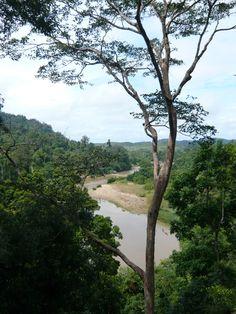 Taman Negara, Maleisië
