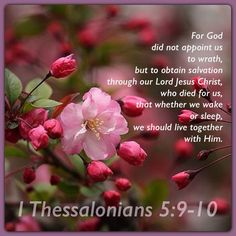 Image result for 1 thessalonians 5:9