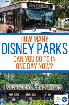 When buying Disney World tickets, there are so many options and things to consider it can be really confusing. One of the biggest decisions is deciding whether to get the Park Hopper ticket or not. When Disney World reopens, however, will park-hopping even be possible anymore? Read here to learn all of the details. #disney #disneyworld #disneytravel #disneyplanning #disneytravel