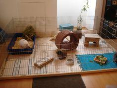 Kanincheninnengehege mit Gehegeelementen