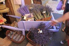 et la lavande en Provence!