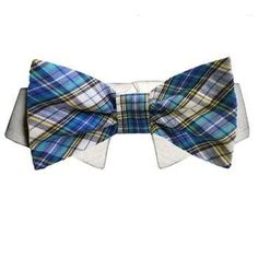 Isaac Dog Shirt Collar and Bow Tie - Blue and Yellow Plaid. Your little tyke wants to strut his stuff in something that looks as sophisticated (yet fun) as he is! The Isaac Dog Shirt Collar & Bow Tie is a perfect fit for times when a more formal look is required.  Hip dress-up collar with detachable plaid bow-tie. Interchangeable with all other detachable Pooch Outfitters dog shirt collars in the same size! 100% Cotton. touch fastener closure.  Why We Love It:Your little guy will go nuts…