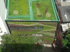 Telhado verde e jardim vertical na nova loja de supermercado carioca #telhadoverde #riodejaneiro #greenroof