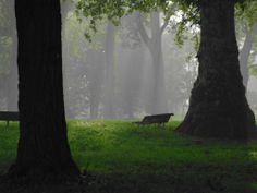 Parco Cavour. Santena, Torino