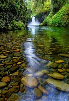 Punch Bowl Falls  is a waterfall on Eagle Creek in the Columbia River Gorge National Scenic Area, Oregon, United States. Eagle Creek d...