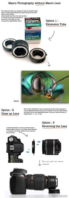 Macro Photography without Macro Lens is possible with some ways that let you to tackle macro photography reducing the spending acceptable compromise on quality.