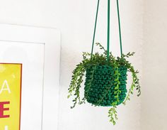 Small Green Plant Hanger, Hanging Planter, Macrame Plant Hanger, Plant Decor, Apartment Decor, Modern Plant Hanger, Minimalist Decor by knitknotsupplyco on Etsy https://www.etsy.com/listing/495944519/small-green-plant-hanger-hanging-planter