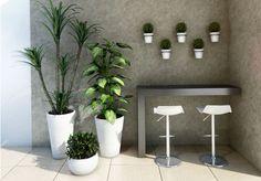 como escolher a planta certa para sua varanda