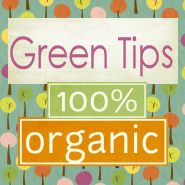 Tons of Green Tips for a green home, including recipes!