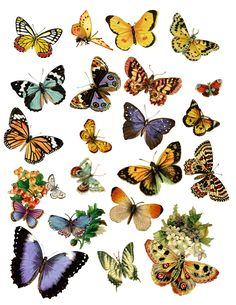 Free Printable Stickers, Printable Art, Printable Butterfly, Printable Scrapbook Paper, Scrapbook Stickers, Vintage Butterfly, Butterfly Art, Planner Bullet Journal, Junk Journal