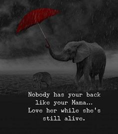 Nobody has your back like your mama.love her while she's still alive love quotes life mom quotes about life life images quotes about mom Mothers Day Quotes, Daughter Quotes, Mother Sayings, True Quotes, Best Quotes, Awesome Quotes, Quotes Quotes, Random Quotes, Maa Quotes