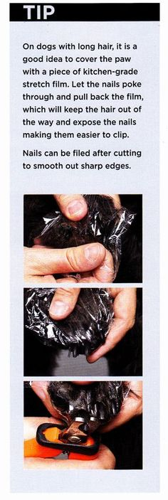 How to trim your dog and cat's nails safely by using plastic wrap to pull the fur out of the way from the book DIY Dog Grooming