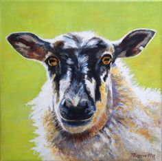 "Sheep painting in Acrylic. "" Pepper ""  By Marietta Modl  2016"