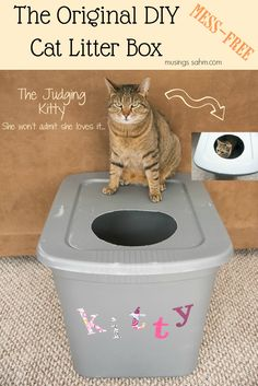 DIY Mess Free Cat Litter Box - Simple (anyone can do it) really cheap and best of all IT WORKS! DIY Mess Free Cat Litter Box - Simple (anyone can do it) really cheap and best of all IT WORKS! Diy Litter Box, Cat Toilet, Cat Hacks, Here Kitty Kitty, Kitty Cats, Cats Bus, Sleepy Kitty, Tabby Cats, Bengal Cats