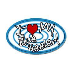 I love my Blue Heeler!