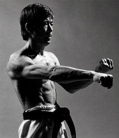 Martial arts master punching